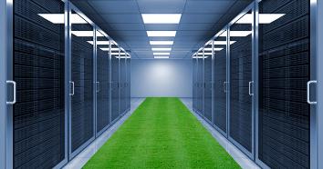 Server-grass